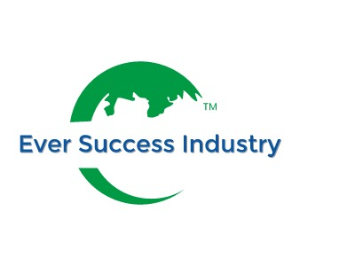 Ever Success Industry公司logo设计